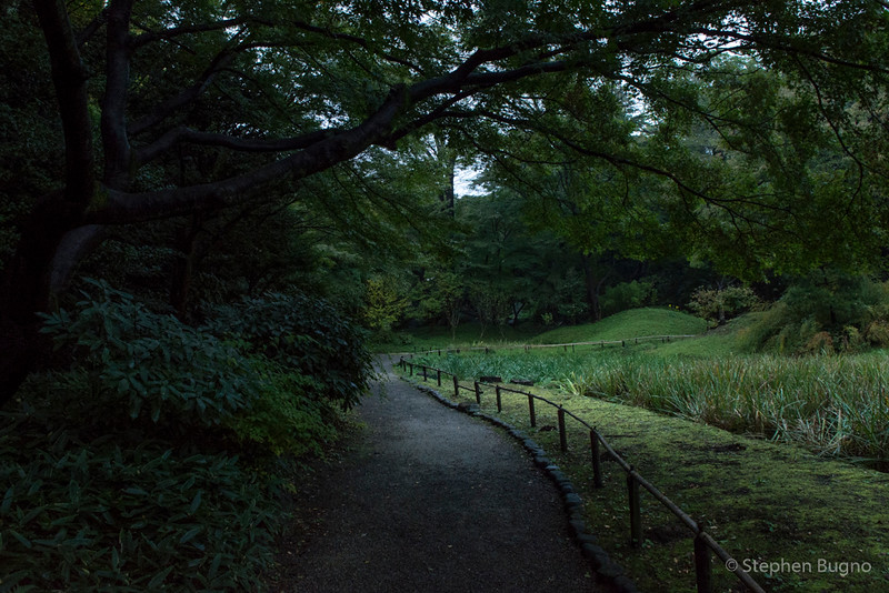 Tokyo One-8418.jpg