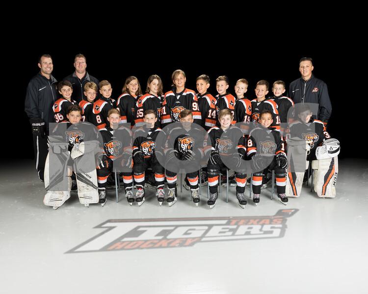 2019-20 Hockey