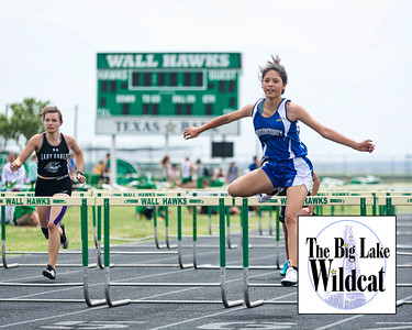 District 4-3A Track Meet