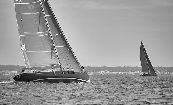 Tulip - K&M Yachts