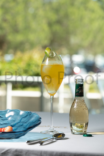 BIRDSONG Schweppes Cocktails 082.jpg