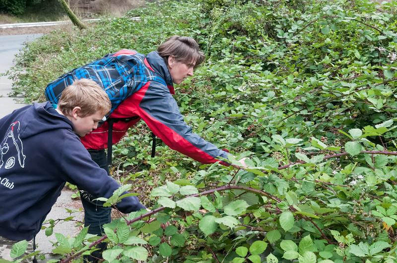 Auf dem Rückweg fanden wir noch reife Brombeeren.