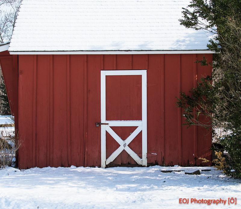 winter shoot-9.jpg