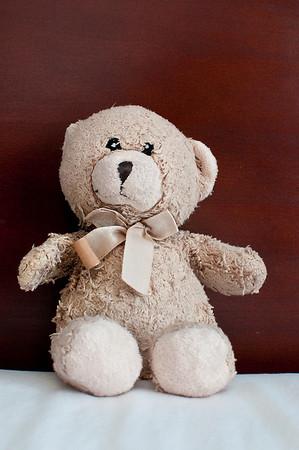 Madeleine's Bear