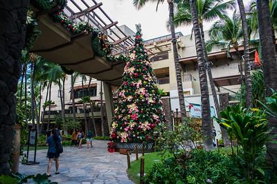 2018 Hawaii  Oahu