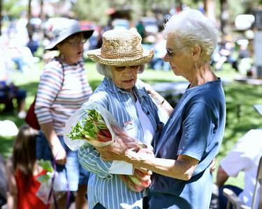 Memorial Day @ Village Green Park 2018