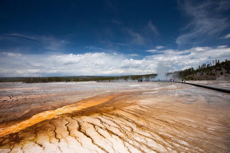 WVWS_Yellowstone-2094.jpg