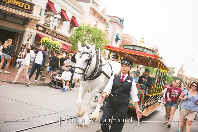 GreenFamily-Disney-119.jpg