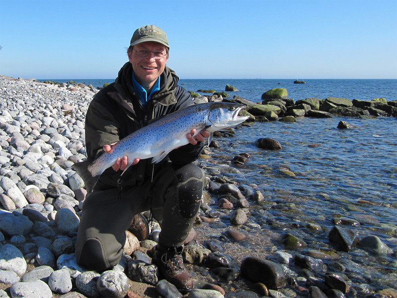 Havørred 3,3 kg, 66 cm.  Møns Fyr, marts 2012.