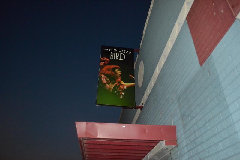 373-the-dizzy-bird_14740888198_o.jpg