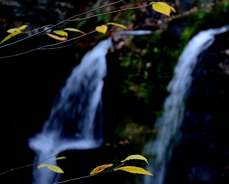 Golden leaves waterfall.JPG