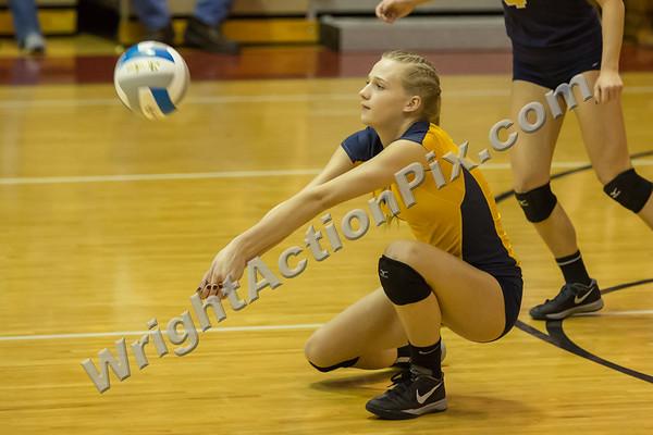 2014 11 13 Clarkston Varsity Volleyball MHSAA Regional Final vs Romeo - Go Wolves!!!