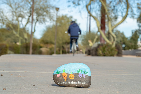 Painted Rocks Tempe Canal Path
