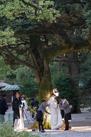 Tokyo - November 18-24, 2013