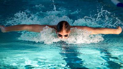 NTNUI Svømming