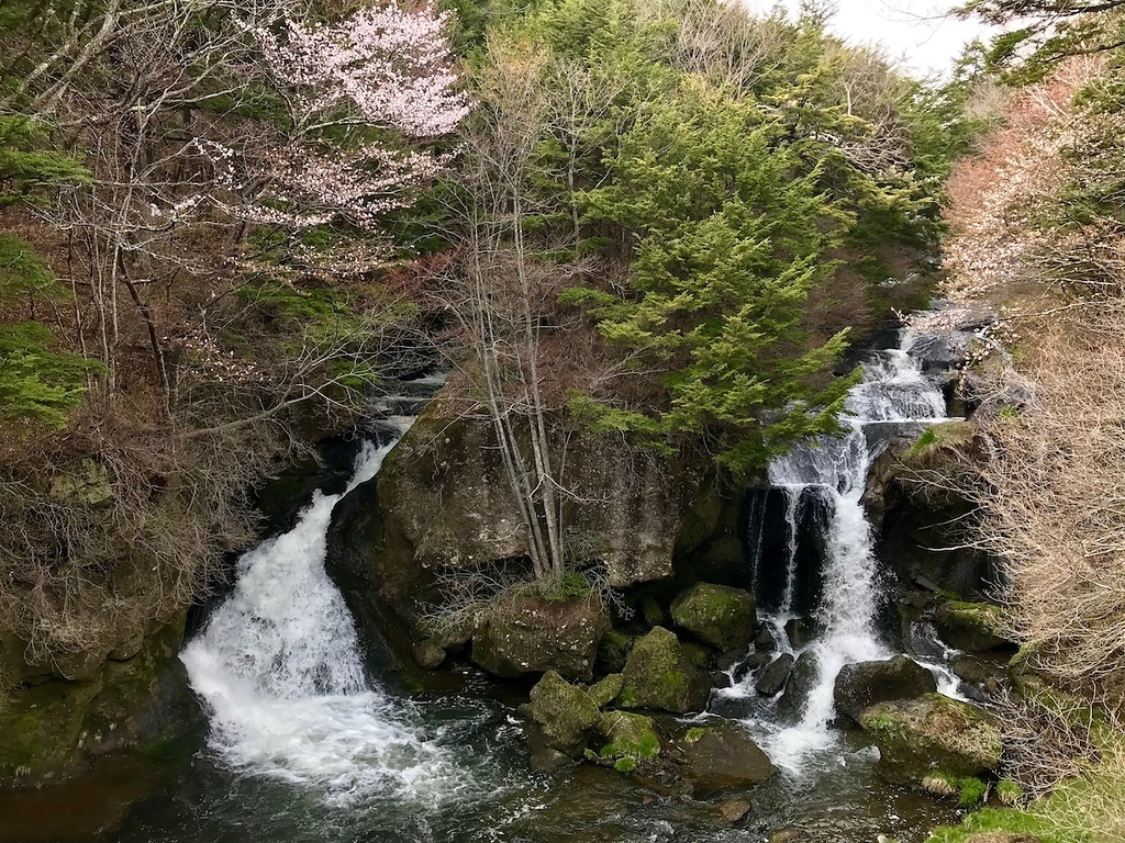 Ryuzu Falls in spring - there are still cherry blossoms around in May!