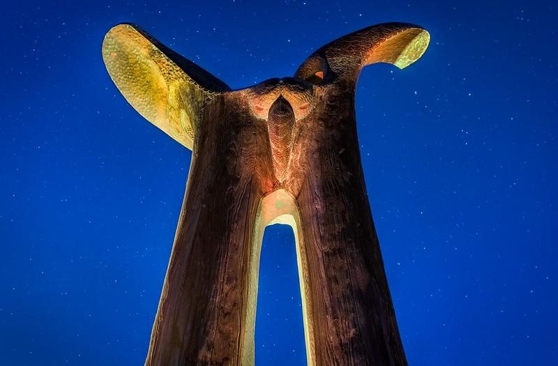 Bruce Johnson Osprey Totem by Candle & Star Light