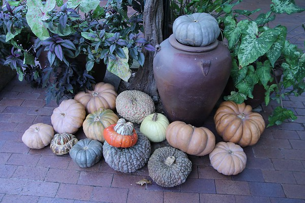 Edited Arboretum 11-11-2010