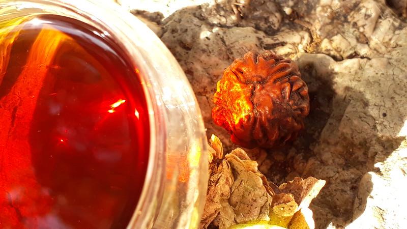 Tea con Kibir & Prana Jiva, Rudraksha of Summer solstice