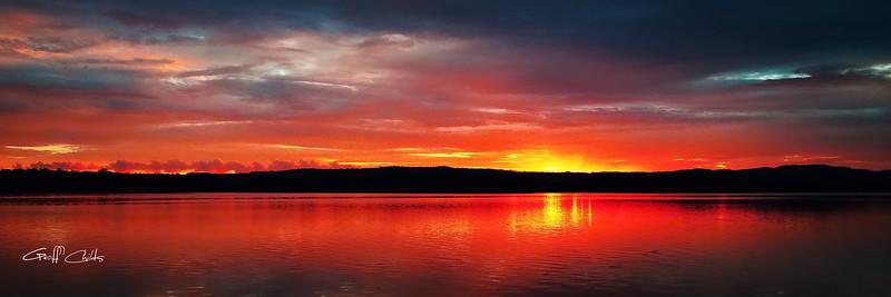Delightful Dawn.