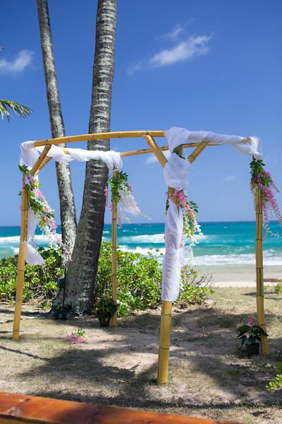 gillin beach kauai wedding-2.jpg