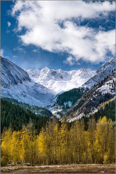 JM8_8456 Aspens snow Mtn LPN WM.jpg