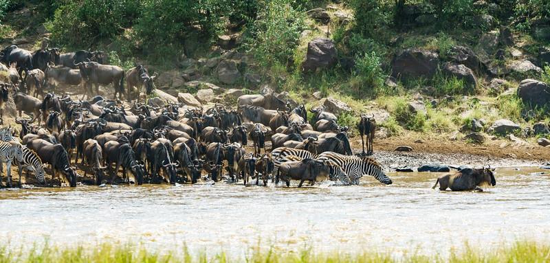 Kenya 2015-06565.jpg