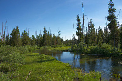 Greater Island Park, Idaho Landscapes and Scenery