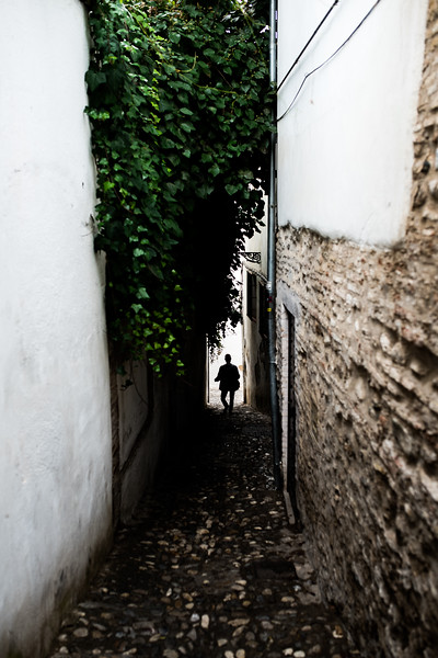 street spain silhouette green alley travel granada-1.jpg