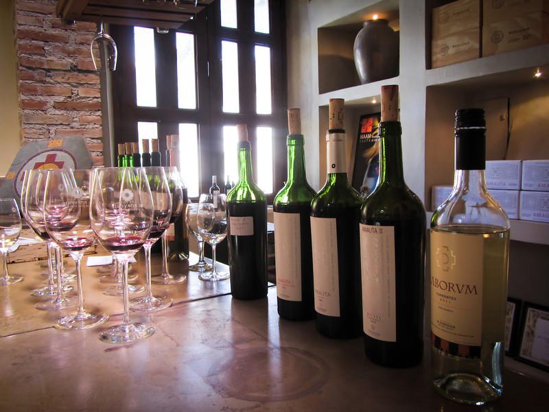 Cafayate 201203 El Porvenir Wine (18).jpg