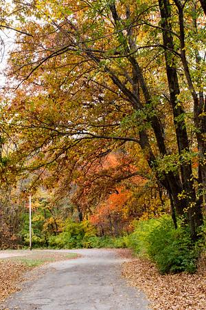 Fowler Park Fall Colors