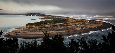 The Spit 'n Images of Salishan