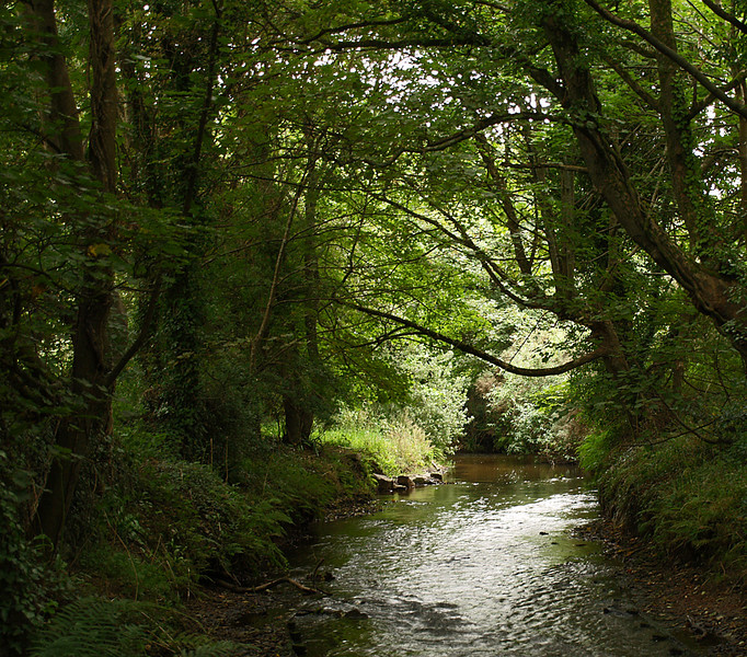 31. River Cober - Cornwall - UK, by JohnM. E-400, 8/27/07.