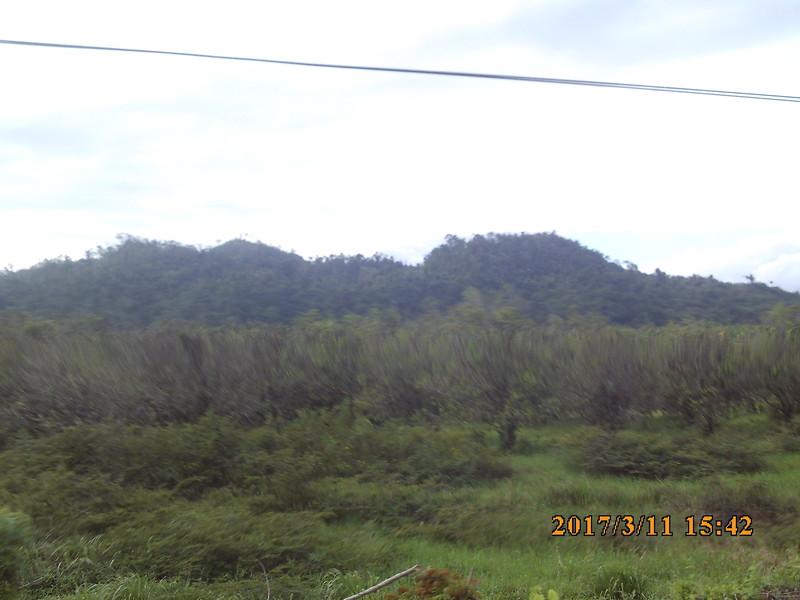 SUNP0590.JPG