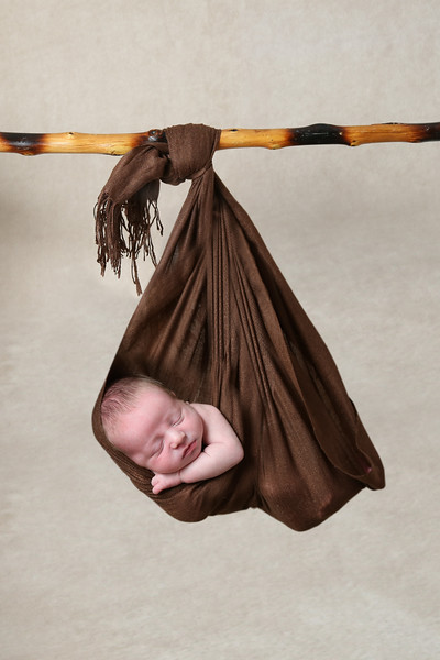 hanging portrait.jpg
