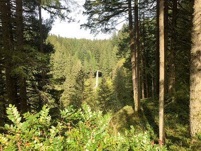 Oregon Spring Break 2016