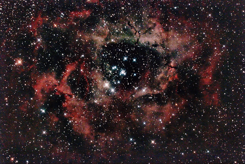 Caldwell C49 & C50 - NGC2237-9,NGC2244, 2246 - Rosette Nebula and Open Cluster in Monoceros - 23/11/2020 (Processed stack)