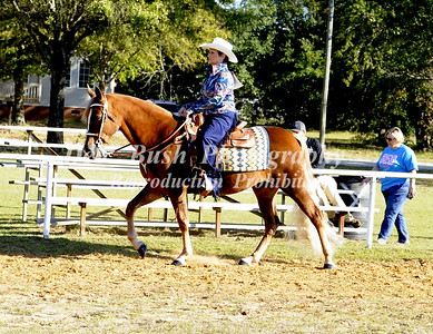 CLASS 21  ALL DAY GAITED  PLEASURE