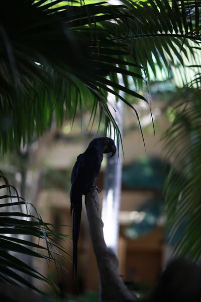 Kauai_D5_AM 235.jpg