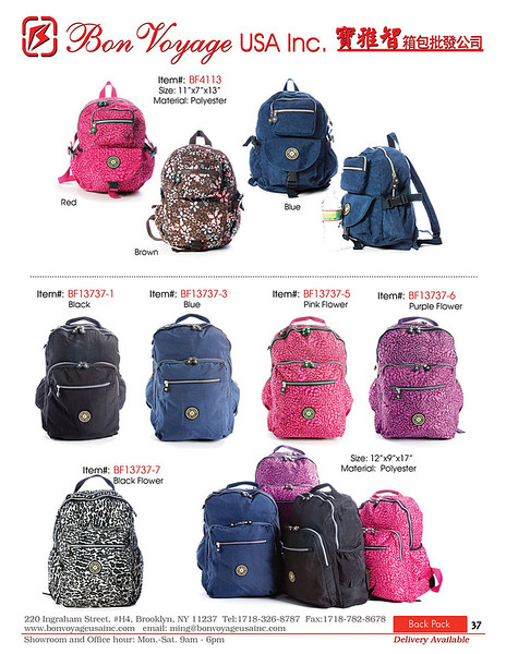 BackPack p37-X2.jpg