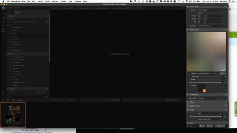 Screen Shot 2019-06-03 at 1.21.34 PM.png