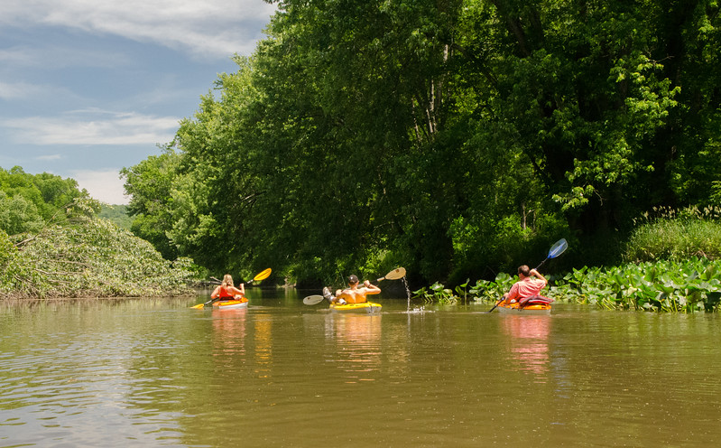 Kayaking Wallkill River (60 of 168).jpg