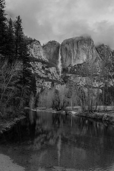 yosemite and sequoia--3.jpg