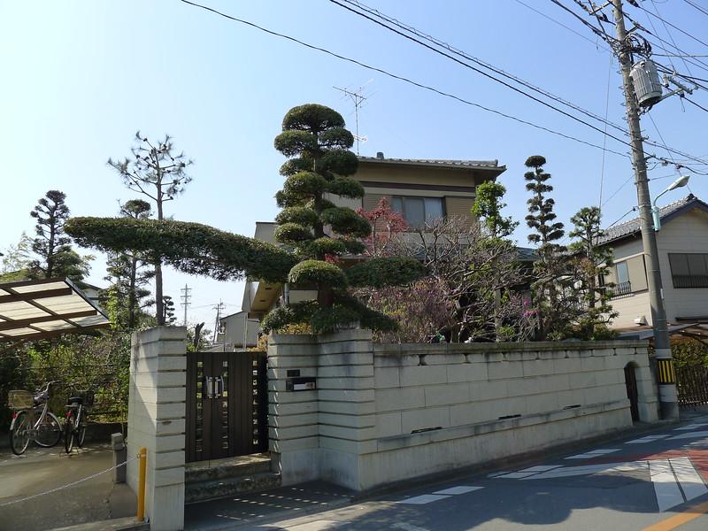 27-Japan2011_0943.JPG