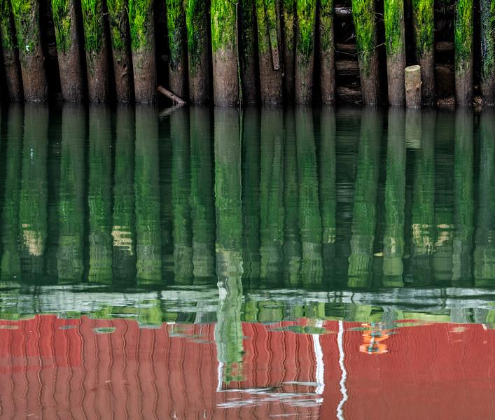 Green Pilings.jpg