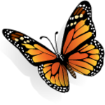 butterfly-icon.png