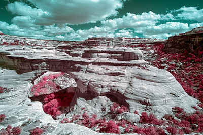 Infrared Landscapes and Nature