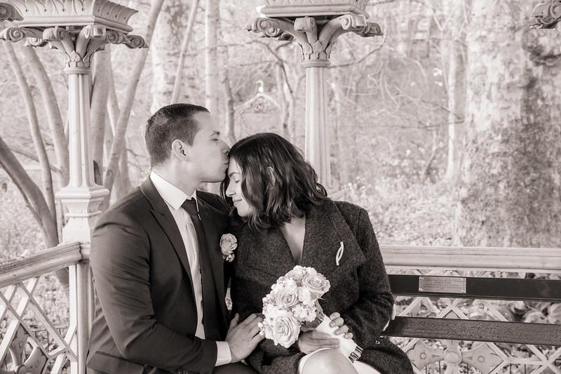 Central Park Wedding - Leonardo & Veronica-39.jpg