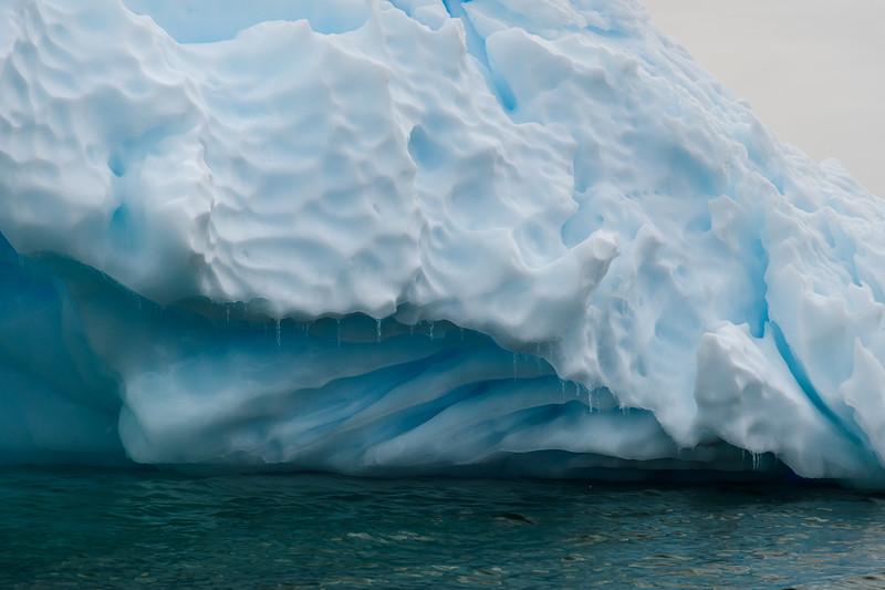 Antarctica-0319.jpg