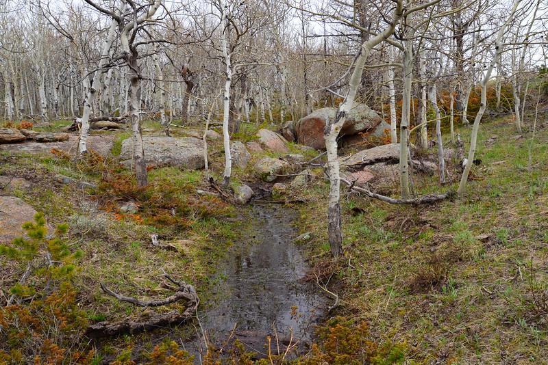 Spring Stream (down),  Vedauwoo